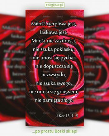 baner-rok-milosierdzia-15