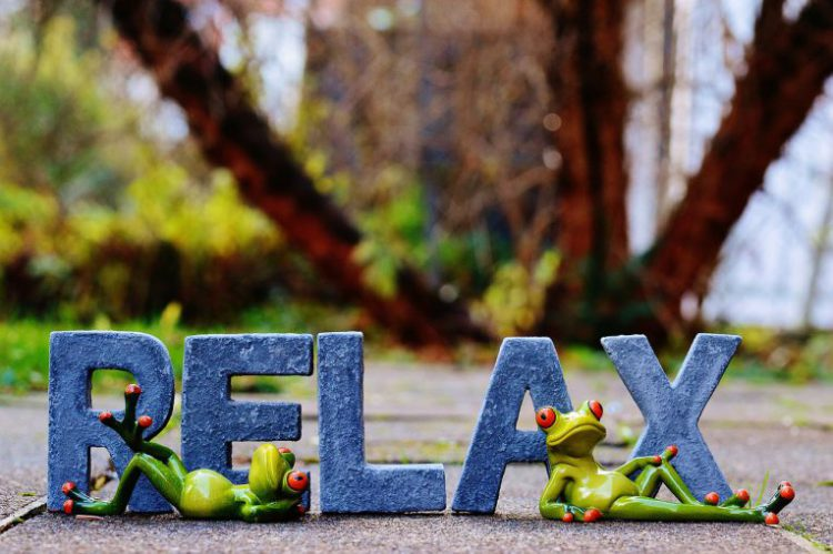 Concerns Relax Rest Favorite Place Recovery Frogs